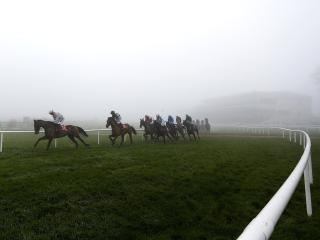 There is racing from Naas on Monday